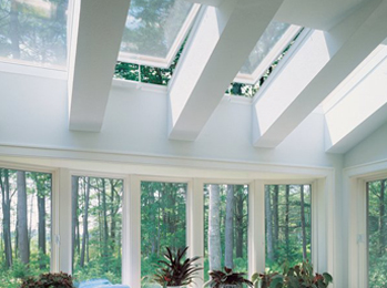 View All Windows & Skylights Services